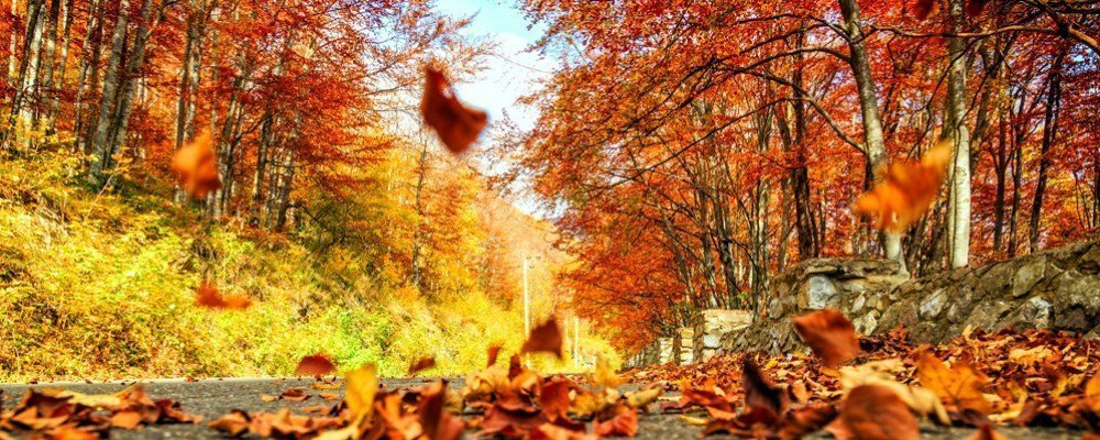 Autumn/Winter camper van hire